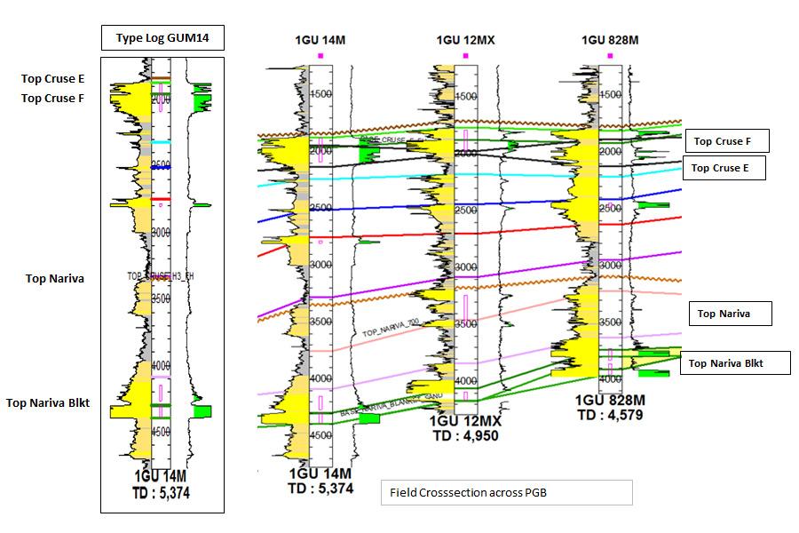 PGB Field Cross Section